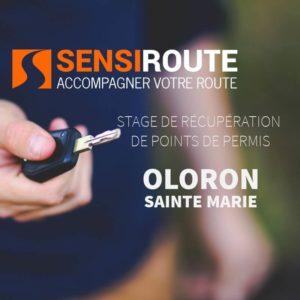 Stage agréé de récupération de points de permis à Oloron Sainte Marie avec Sensiroute